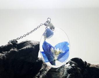 Blue Delphinium Bloom