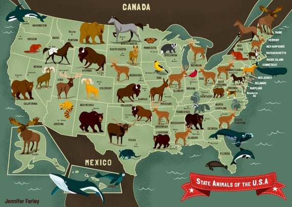 State Animals Map of the United States USA Animal Map