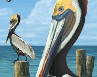 Gulf Shores, Alabama - Brown Pelican (Art Prints available in multiple sizes)