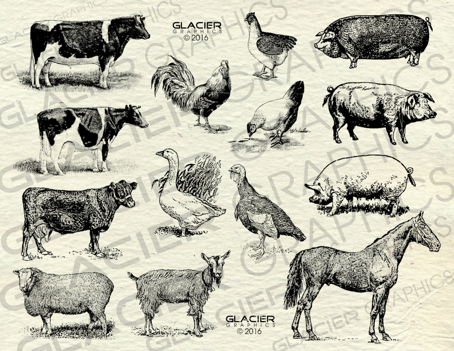 Vintage Farm Animal Illustrations Printable Animals