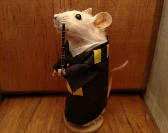 Wizard student taxidermy mice