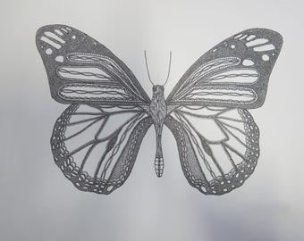 Original framed butterfly drawing