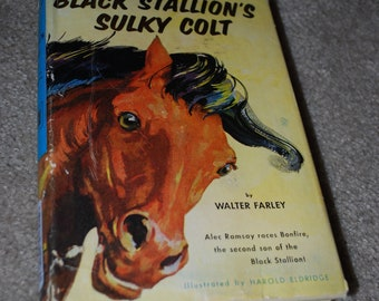 The Black Stallion's Sulky Colt, by Walter Farley, 1954 hardback edition, children's book, classic
