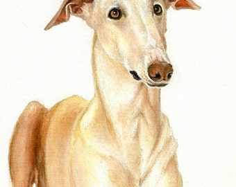 Original Oil DOG Portrait Painting WINDHUND Artwork from Artist