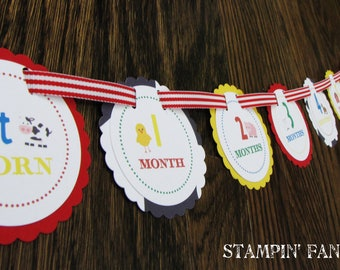 """Barnyard Bash Collection: Just Born/0-12 Months Barnyard First Birthday Photo Picture Banner for hanging 4x6"""" pictures. Farm Birthday."""