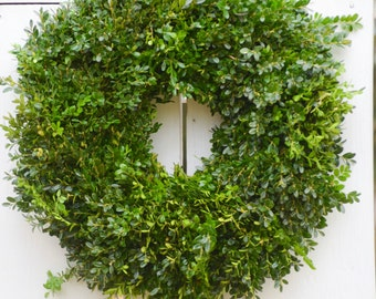 "Fresh English boxwood wreath, 22"" wreath, boxwood wreath, holiday wreath, Christmas wreath, boxwood wreaths, fresh wreath, garland, greenery"
