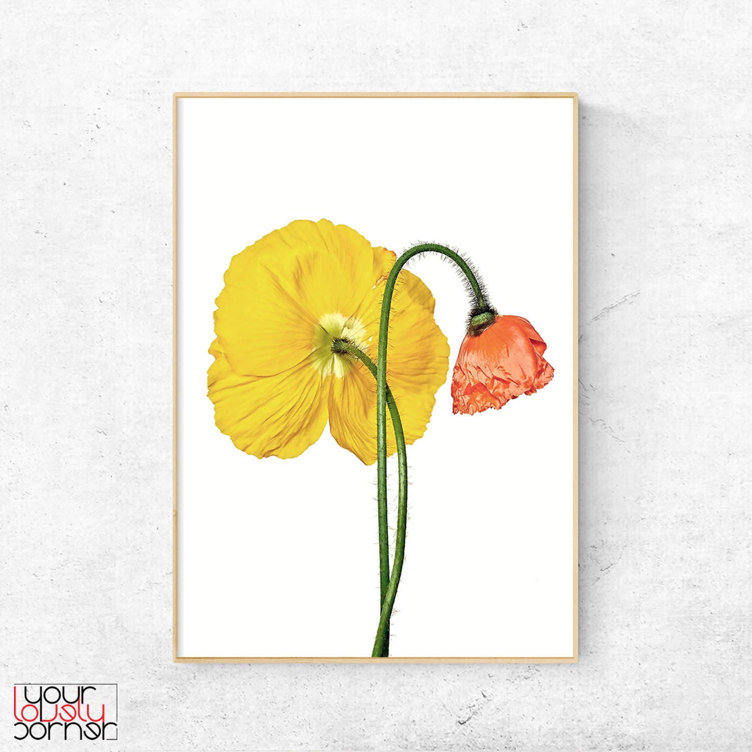 Old Fashioned Wall Art Poppies Inspiration - Wall Art Collections ...