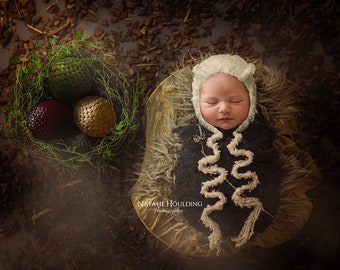 Game of Thrones - Khaleesi - Newborn Digital Backdrop - Poppet