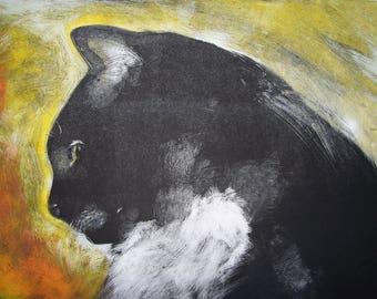 Repose Tuxedo Cat Photo of Monotype Fine Art Print