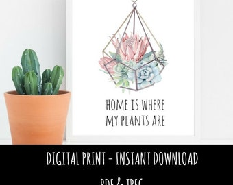 Instant Download Printable Wall Art Print 'Home is Where My Plants Are' Cactus Succulents Print, Wall Decor A4 PDF & JPEG format
