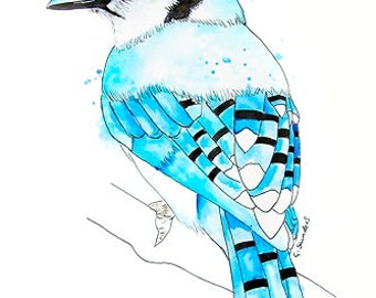 Limited Edition Hand Signed Giclee Art Print 'Blue Jay' Original Watercolor Illustration of a Bird