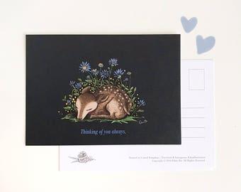 Sleeping Deer Postcard - Thinking of you always