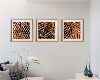 Abstract 3C Print Collection.  Detail photography, wood, toothpicks, warm, cream, ochre, wall art, artwork, large format photo.