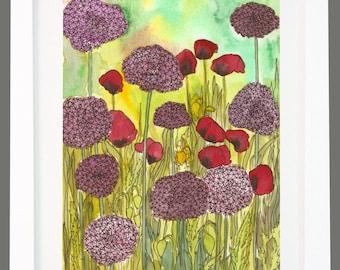Allium and Poppies garden floral print A3/A4