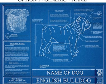 Personalized English Bulldog Blueprint / English Bulldog Art / English Bulldog Wall Art / English Bulldog Gift / English Bulldog Print