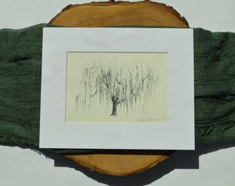 Natural Fine Art Print - Weeping Willow Tree Pen and Ink Illustration - Artist  Heather L. Young