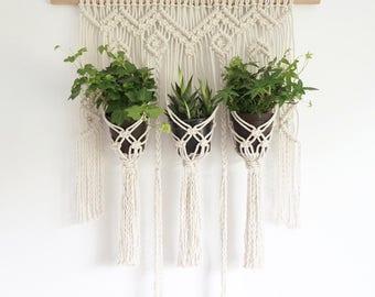 Macrame Plant Hanger Trio