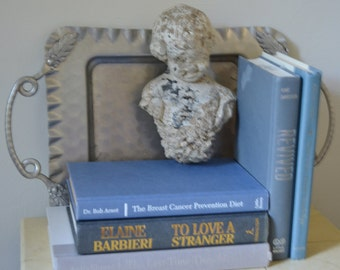 BOOK BUNDLE Blue and Grey Stacked Book Bundle for Home Decorating Display