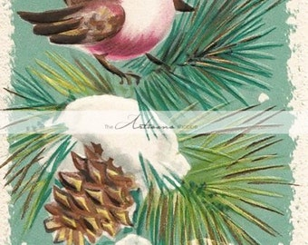 Instant Printable Download - Christmas Bird in Pine Tree Card - Paper Crafts Altered Art Scrapbook - Vintage Christmas Card Shabby Chic