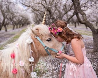 Unicorn Horn for Horse, Unicorn Horn Horse, Variety of Sizes Colors Realistic Hard Unicorn Horn for Pony Donkey Horse, Large Horn, Pony Horn
