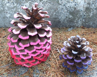 Pink Ombre, Chevron Painted Pinecone: Set of 1