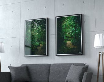 AMAZONIA - Two Nature Photographs - Home Decor - Wall Art - Digital download - Large Print