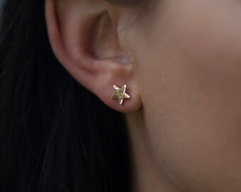 Stud | free shipping | earring | gold | minimalistic | star