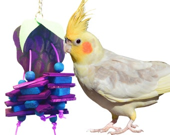 904 Grape Chipper Bird Toy