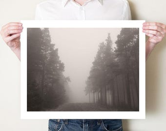 Forest photography, ethereal winter landscape. Foggy woodland fine art photograph, misty pine trees print: 5x7, 8x10, 11x14 to 20x30 & 30x40