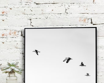 Instant Download Printable Art, Black and White Photography, Birds in Flight   {DIGITAL PRINT}