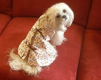 Dog Hospital Gown Costume - CALL THE DOCTOR - Therapy visit - dogs 2 to 12 lbs-choose fabric