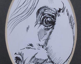 Arabian horse, equine art, equestrian, horse portrait, cheval, original pen drawing