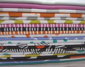 Follie Half Yard Bundle (21) by Lotta Jansdotter for Windham Fabrics