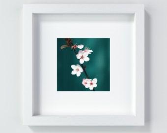 Bloom cherry blossom pink blossom flower gift present Fine Art Print 13 x 13 cm + 20 x 20 cm