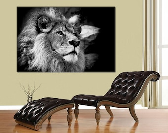 African Lion, Black And White Lion Print, Canvas Print. Lion Wall Art,