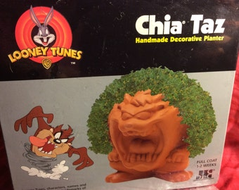 Chia-Taz-Handmade-Decorative-Planter-Looney-Tunes-Classic-