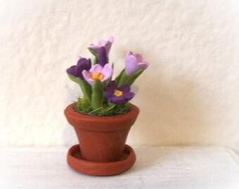 Miniature Crocus violet et lavande en terre cuite de couleur Pot w soucoupe Artisan sculpté Dollhouse 12 échelle Garden décor