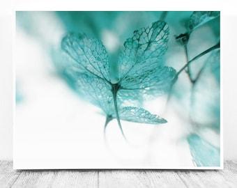 Close Up Photography, Blue Aqua, Hydrangea Picture, Blue Aquamarine, Macro Photography, Hydrangea Photo, Teal Wall Print, Printable Wall Art