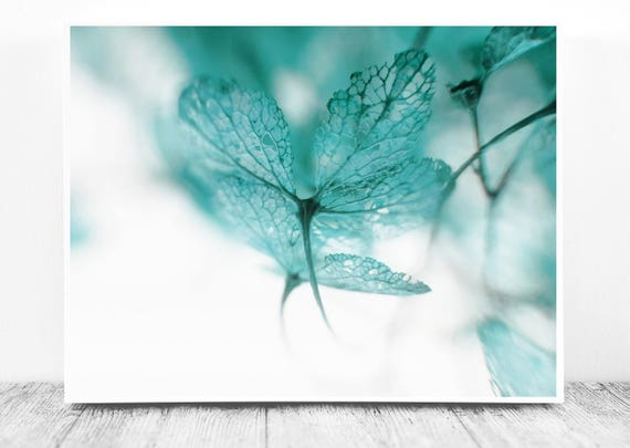 Hydrangea Photo (Close Up Photography) for Instant Download. Macro Blue Aquamarine Teal Wall Print to Update your Home of Office Decor