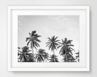 Palm Tree Digital Print, Palm Tree Wall Prints, Black White Photography, Black White Palms, Palm Tree Wall Art, Tree Digital Prints