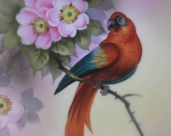 Antique Noritake A Haruna Signed Macaw Parrot Hand Painted Plate