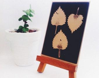 ACEO Original Artwork - Nature Art Photogram - Black and White - Three Leaves Mini Art Piece