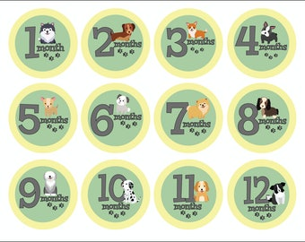 Baby Milestone Stickers, Baby Month Stickers, Monthly Baby Stickers, Baby Shower Gift, Baby Photo Props, Baby Growth Stickers