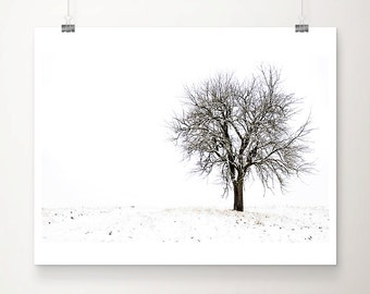 Snow Photography Tree Photograph Winter Landscape Photograph Nature Photography White Snow Brown Tree Print winter photograph