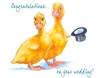 Wedding Congratulations Duck Greeting Card - love greeting card - funny and cute wedding card -