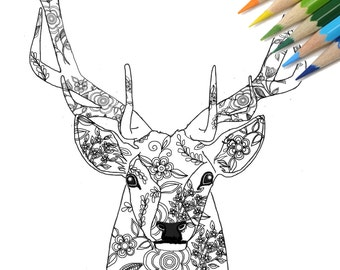 Stag DIY Print At Home Digital Download Colouring Page Adult Coloring