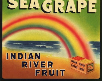 Original vintage Florida citrus crate label c1930s Sea Grape Indian River Deerfield Wabasso Rainbow Colors