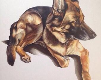 Made-to-Order, Custom Full Body Pet Portrait