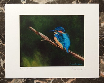 Kingfisher Giclee print, kingfisher fine art, kingfisher on a branch, bird fishing, blue bird art, blue green wall art, cute bird art, bird
