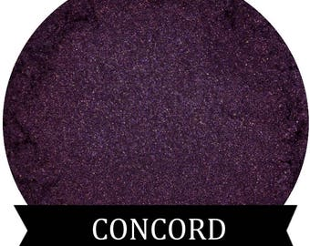 CONCORD Purple Eyeshadow Fall Collection